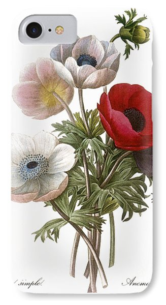 Redoute: Anemone, 1833 Phone Case by Granger