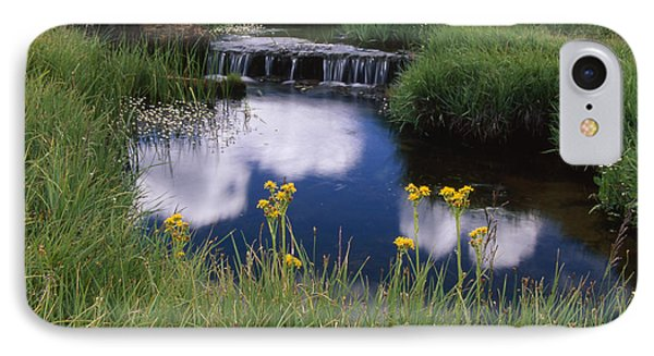 Reflections - Casa Vieja Meadows IPhone Case by Soli Deo Gloria Wilderness And Wildlife Photography