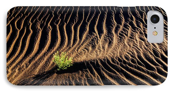 Resilient Plant Growing In Sand IPhone Case by Vishwanath Bhat