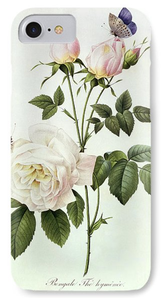 Rosa Bengale The Hymenes IPhone Case by Pierre Joseph Redoute