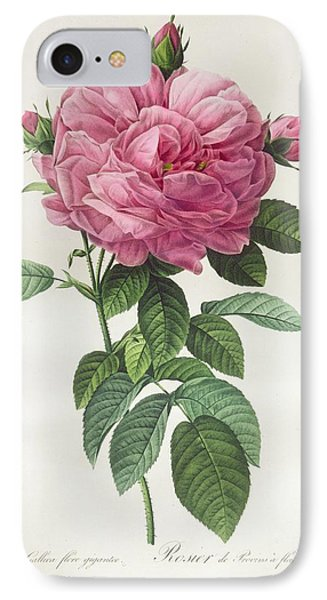 Rosa Gallica Flore Giganteo IPhone Case by Pierre Joseph Redoute