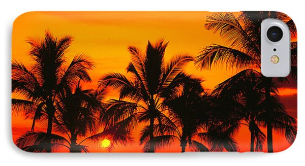Row Of Palms Phone Case by Bill Schildge - Printscapes