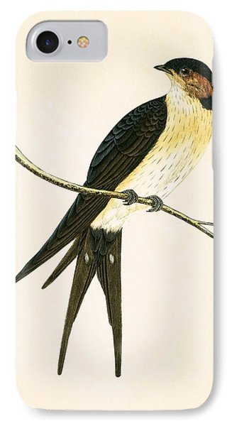 Rufous Swallow IPhone Case by English School