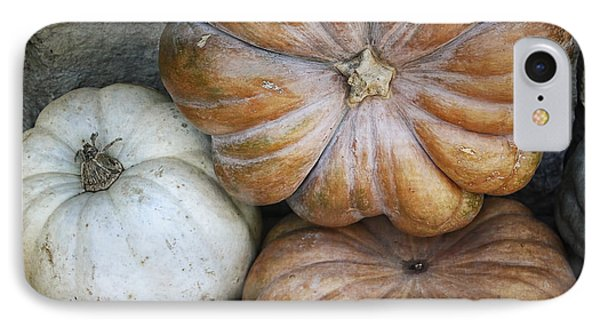 Rustic Pumpkins Phone Case by Joan Carroll