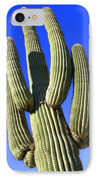 Saguaro Cactus - Arizona IPhone Case by Mike McGlothlen
