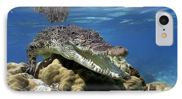 Saltwater Crocodile Smile IPhone Case by Mike Parry