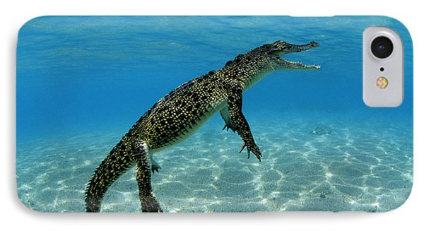 Saltwater Crocodile IPhone 7 Case by Franco Banfi and Photo Researchers