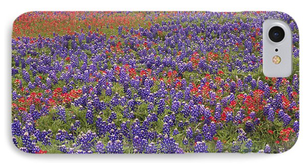 Sand Bluebonnet And Paintbrush Phone Case by Tim Fitzharris