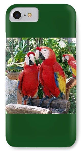 Scarlet Macaws IPhone Case by Ellen Henneke