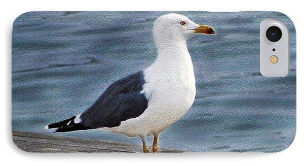 Seagull Portrait Phone Case by Sue Melvin