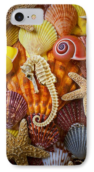 Seahorse And Assorted Sea Shells IPhone Case by Garry Gay