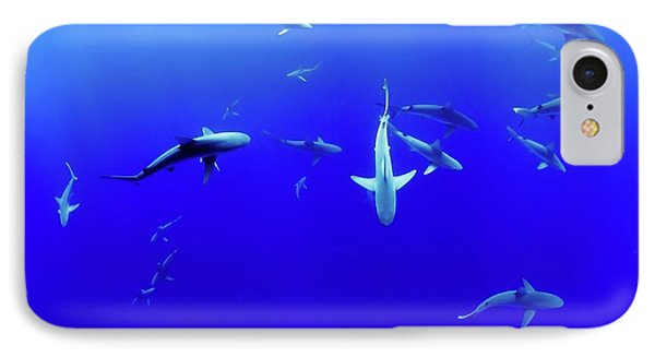 Shark Life  IPhone Case by Ca Photography