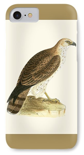 Short Toed Eagle IPhone Case by English School
