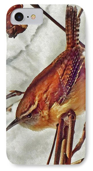 Slim Pickens, Carolina Wren IPhone Case by Ken Everett