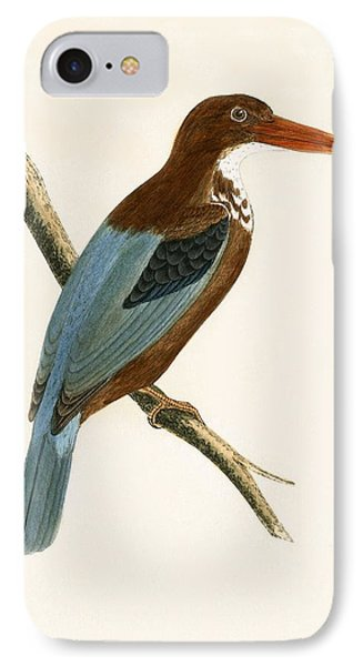 Smyrna Kingfisher IPhone 7 Case by English School