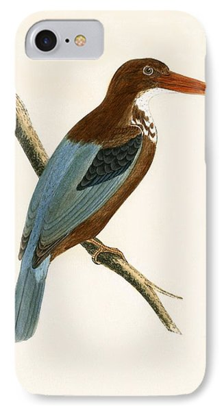 Smyrna Kingfisher IPhone Case by English School