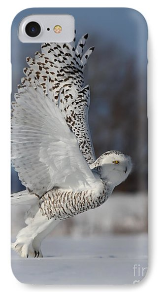 Snowy Angel IPhone Case by Mircea Costina Photography