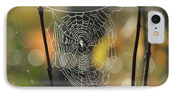 Spider's Creation Phone Case by Karol Livote