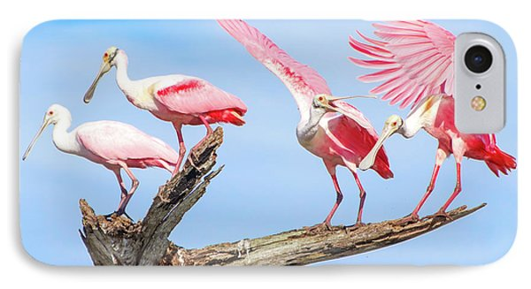 Spoonbill Party IPhone Case by Mark Andrew Thomas
