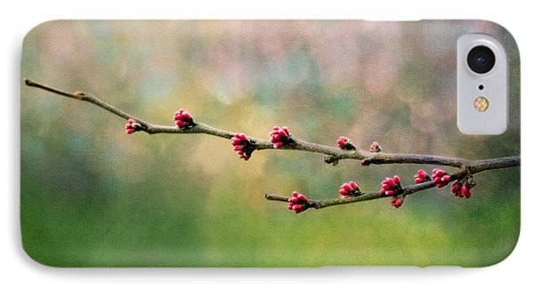 Spring Redbud IPhone Case by Moon Stumpp
