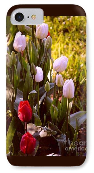 Spring Time Tulips IPhone Case by Susanne Van Hulst