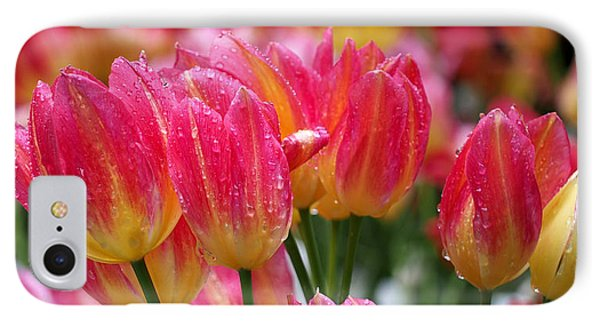 Spring Tulips In The Rain IPhone Case by Rona Black
