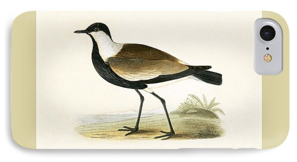 Spur Winged Plover IPhone Case by English School