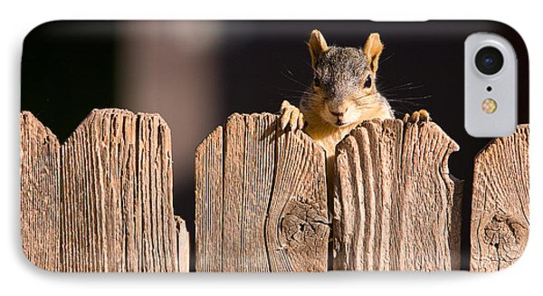 Squirrel On The Fence Phone Case by James BO  Insogna