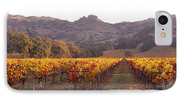 Stags Leap Wine Cellars Napa IPhone Case by Panoramic Images