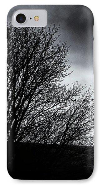 Starlings Roost IPhone Case by Philip Openshaw
