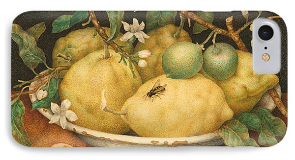 Still Life With A Bowl Of Citrons IPhone Case by Giovanna Garzoni