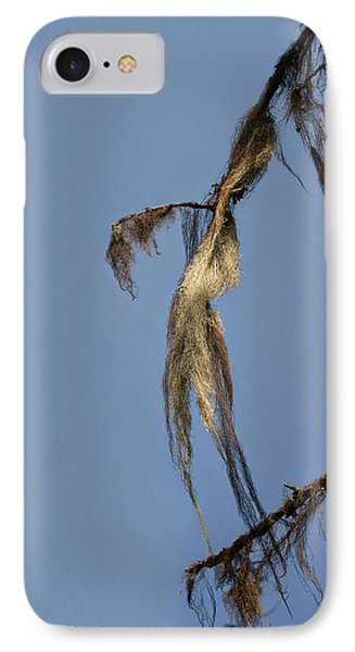 Strand Of Moss Swaying Gently With The Wind - Tiger Mountain Wa Phone Case by Christine Till