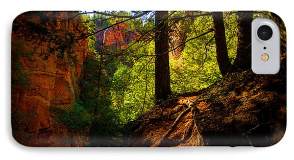 Subway Forest IPhone Case by Chad Dutson