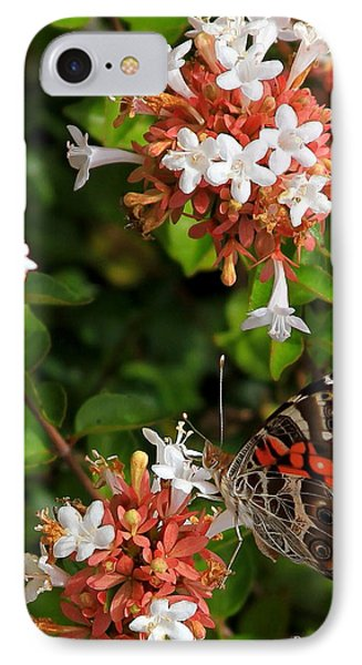 Such A Lady Painted Lady Butterfly IPhone Case by Reid Callaway