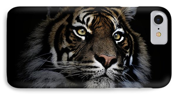 Sumatran Tiger IPhone Case by Avalon Fine Art Photography