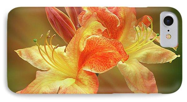 Sunburst Orange Azalea Phone Case by Gill Billington