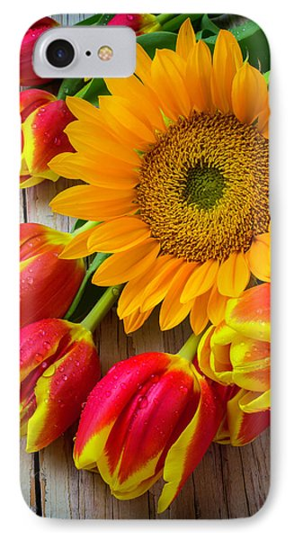 Sunflower And Tulips IPhone Case by Garry Gay