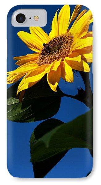 Sunflower Breakfast 1. Just Arrived  IPhone Case by Rusalka Koroleva
