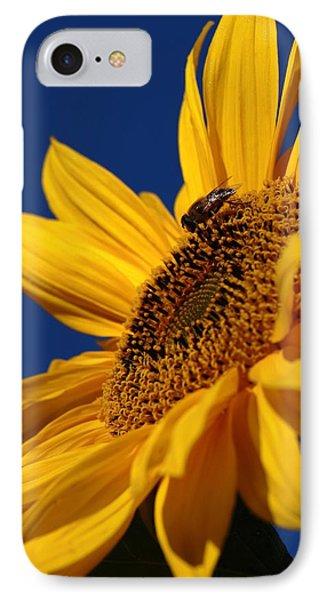 Sunflower Breakfast 2 IPhone Case by Rusalka Koroleva