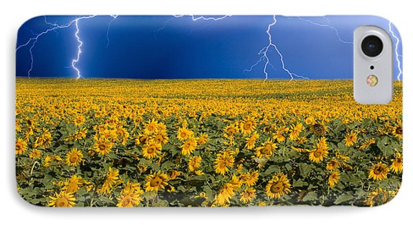 Sunflower Lightning Field  IPhone Case by James BO  Insogna