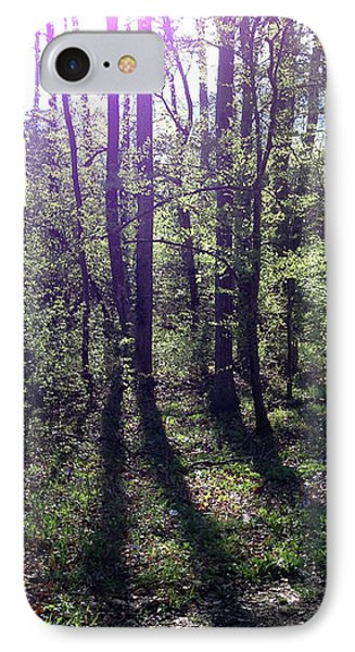Sunlight From The East IPhone Case by Janet Felts