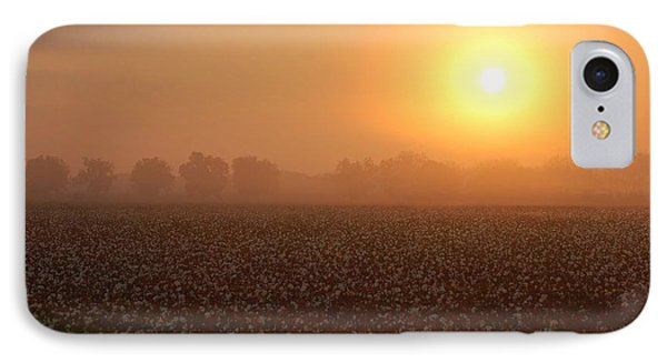 Sunrise And The Cotton Field Phone Case by Michael Thomas