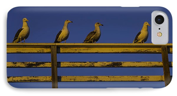 Sunset Seagulls IPhone Case by Garry Gay