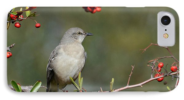 Surrounded By Berries 2 IPhone Case by Fraida Gutovich
