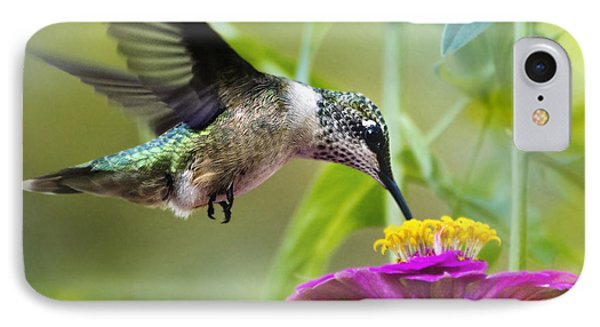 Sweet Success Hummingbird Square IPhone Case by Christina Rollo