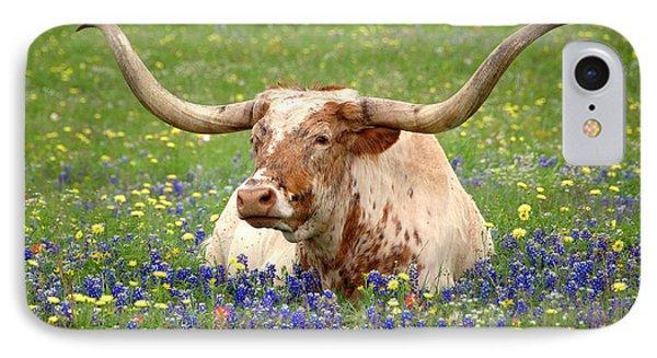 Texas Longhorn In Bluebonnets Phone Case by Jon Holiday