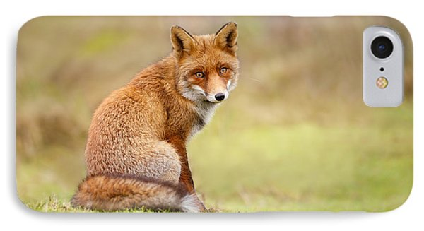 That Look - Red Fox Male IPhone 7 Case by Roeselien Raimond