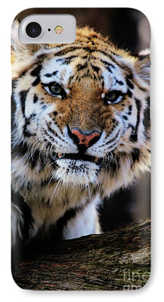 That Tiger Look Phone Case by Karol Livote