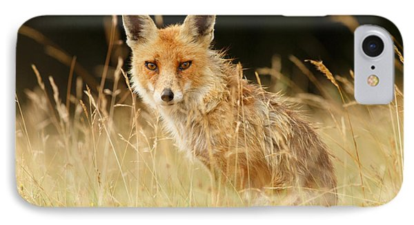 The Catcher In The Grass - Wild Red Fox IPhone Case by Roeselien Raimond