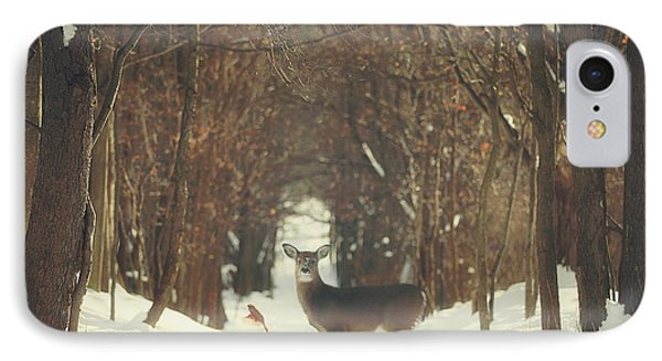 The Forest Of Snow White IPhone Case by Carrie Ann Grippo-Pike